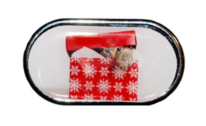 OPTIPAK LIMITED Pouzdro se zrcátkem Vánoční motiv - Kotě v krabici